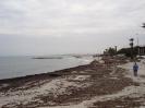 Port El Kantaoui (03/2010)