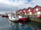 Explore Norway - Tag 2 in Andenes_14