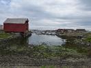 Explore Norway - Tag 2 in Andenes_3