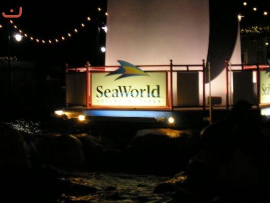 orlando sea world und kennedy space center mit condor. Black Bedroom Furniture Sets. Home Design Ideas